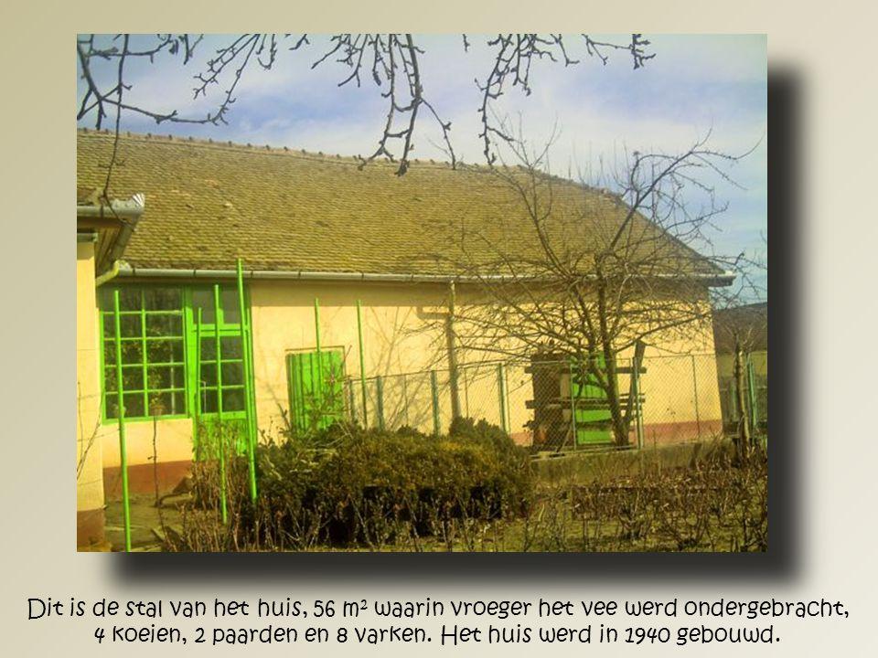 Dit is de stal van het huis, 56 m 2 waarin vroeger het vee werd ondergebracht, 4 koeien, 2 paarden en 8 varken.
