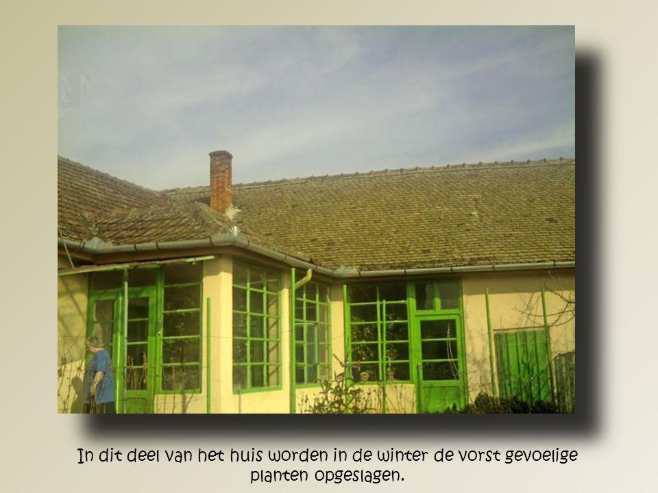 De oude dakspanten en het andere hout wordt in de tuin opgeslagen en zal in de komende winter worden gebruikt voor de verwarming.