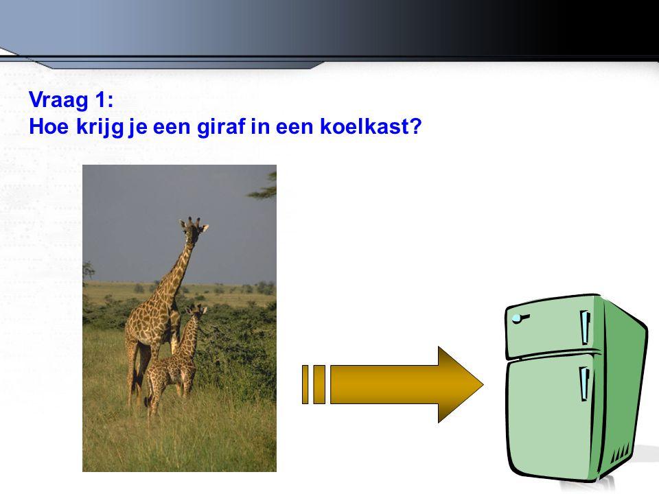 Het goede antwoord is: Open de koelkast, doe de giraf erin en sluit de deur.