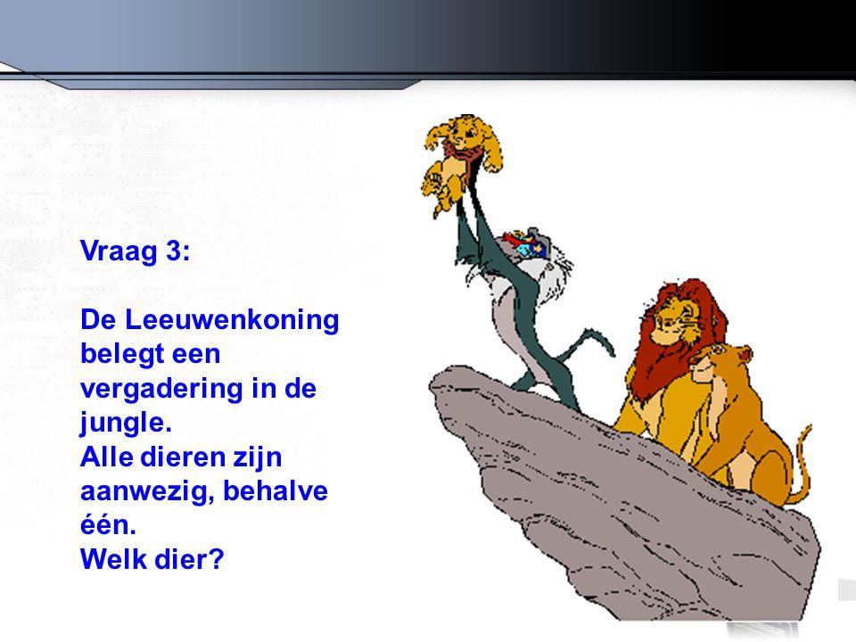 Vraag 3: De Leeuwenkoning belegt een vergadering in de jungle. Alle dieren zijn aanwezig, behalve één. Welk dier?