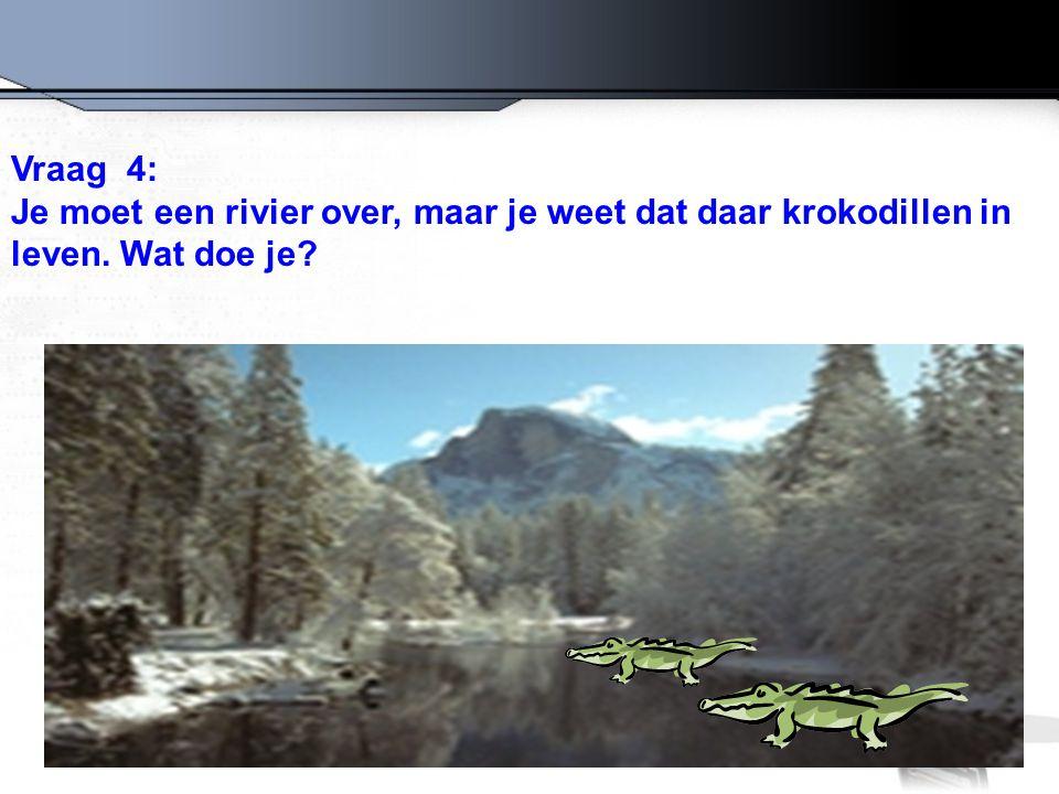 Vraag 4: Je moet een rivier over, maar je weet dat daar krokodillen in leven. Wat doe je?