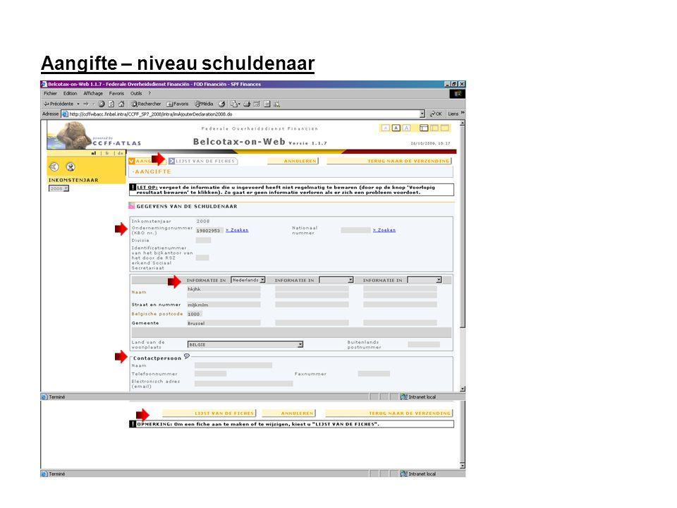 Aangifte – niveau schuldenaar - Lijst van de fiches Klik op de knop Fiche toevoegen