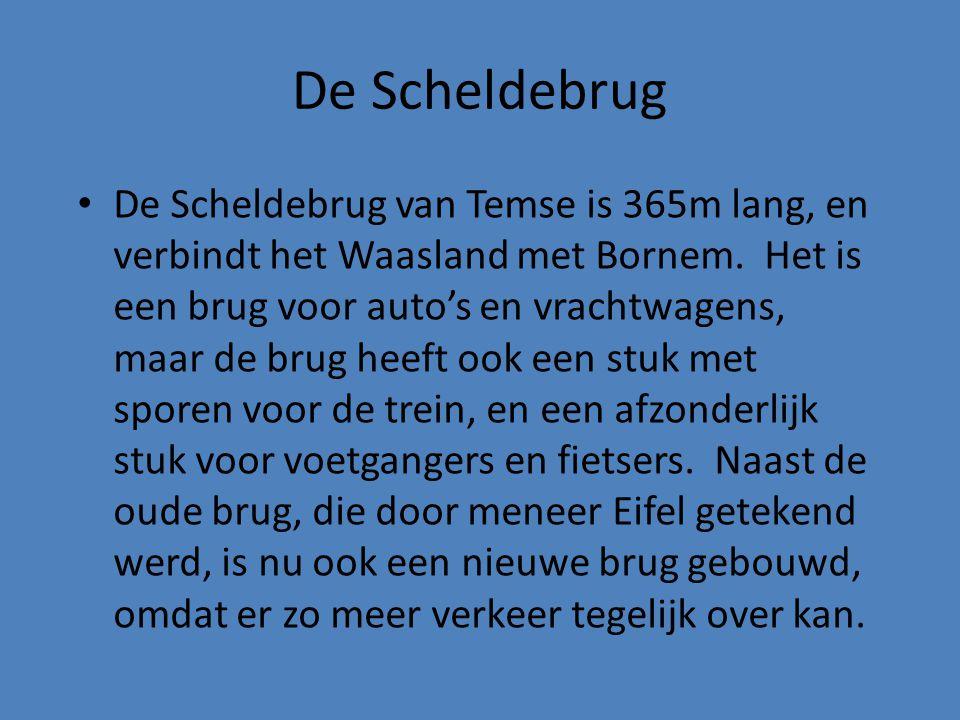 • De Scheldebrug van Temse is 365m lang, en verbindt het Waasland met Bornem. Het is een brug voor auto's en vrachtwagens, maar de brug heeft ook een