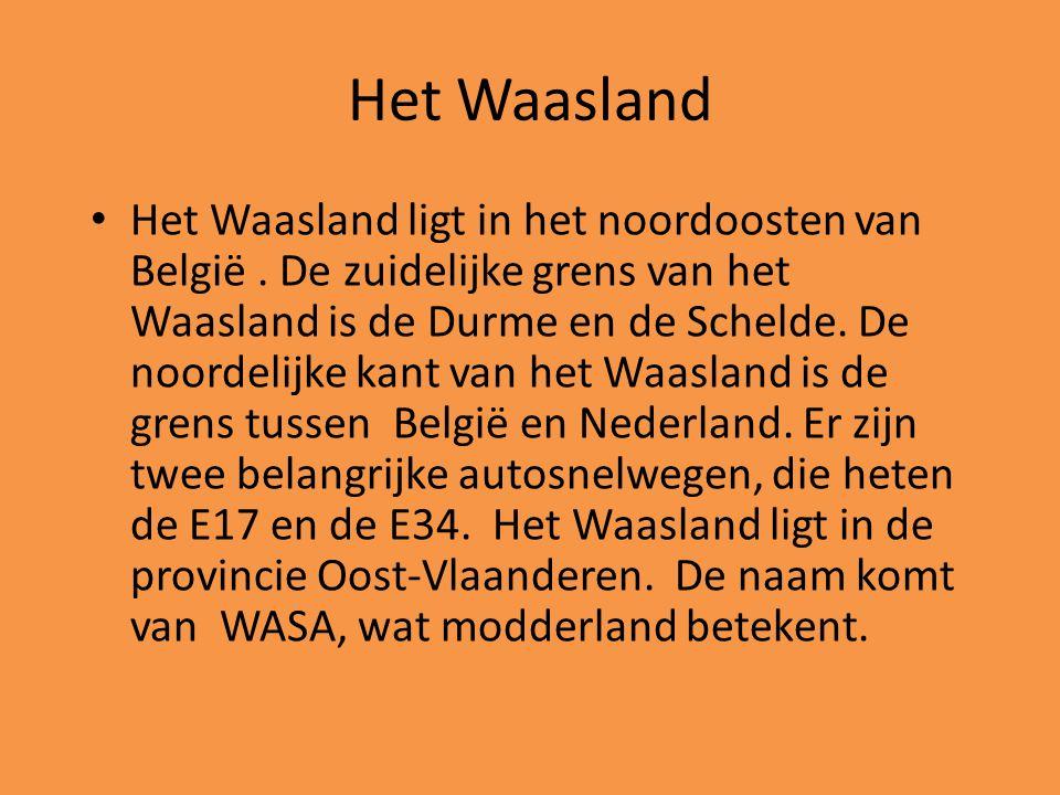 Het Waasland • Het Waasland ligt in het noordoosten van België. De zuidelijke grens van het Waasland is de Durme en de Schelde. De noordelijke kant va