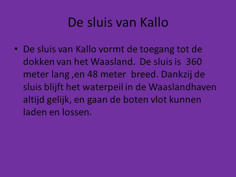 De sluis van Kallo • De sluis van Kallo vormt de toegang tot de dokken van het Waasland. De sluis is 360 meter lang,en 48 meter breed. Dankzij de slui