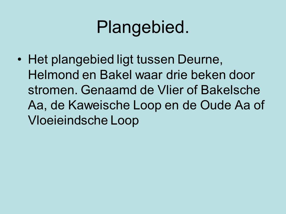 Plangebied. •Het plangebied ligt tussen Deurne, Helmond en Bakel waar drie beken door stromen. Genaamd de Vlier of Bakelsche Aa, de Kaweische Loop en
