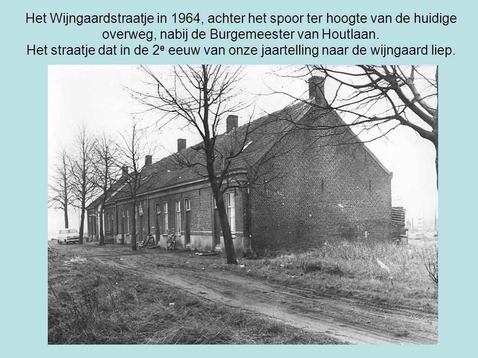 Het Wijngaardstraatje in 1964, achter het spoor ter hoogte van de huidige overweg, nabij de Burgemeester van Houtlaan. Het straatje dat in de 2 e eeuw