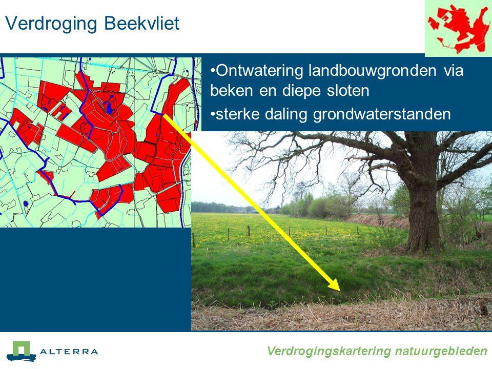 Verdrogingskartering natuurgebieden Verdroging Beekvliet •Ontwatering landbouwgronden via beken en diepe sloten •sterke daling grondwaterstanden
