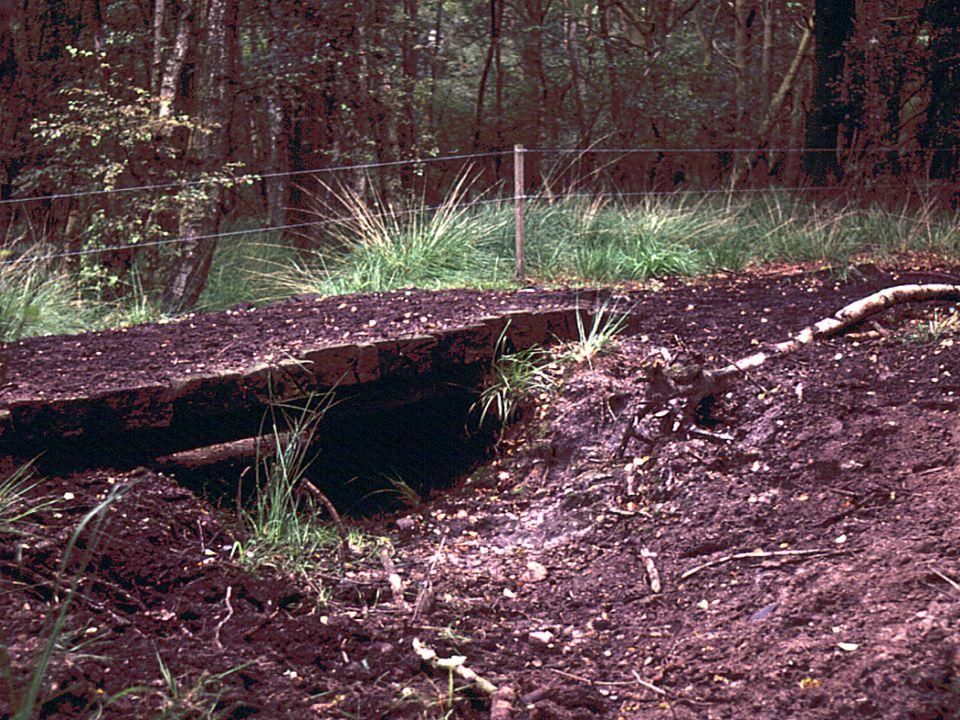 Verdrogingskartering natuurgebieden