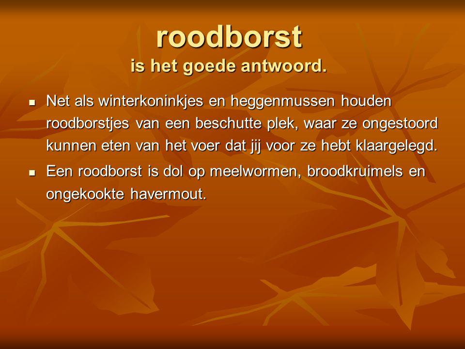  koolmees  pimpelmees  boomklever  lijster Is dit een Foto: Adri de Groot / www.vogeldagboek.nl