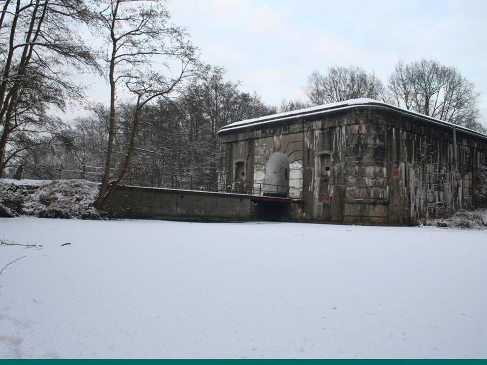 Het fort behoort niet tot de Speciale Beschermingszone:  Passieve bescherming: strikte bescherming van de aanwezige vleermuizen en hun verblijfplaatsen  Overal: forten, bunkers, (kerk)zolders, ijskelders, huizen,...