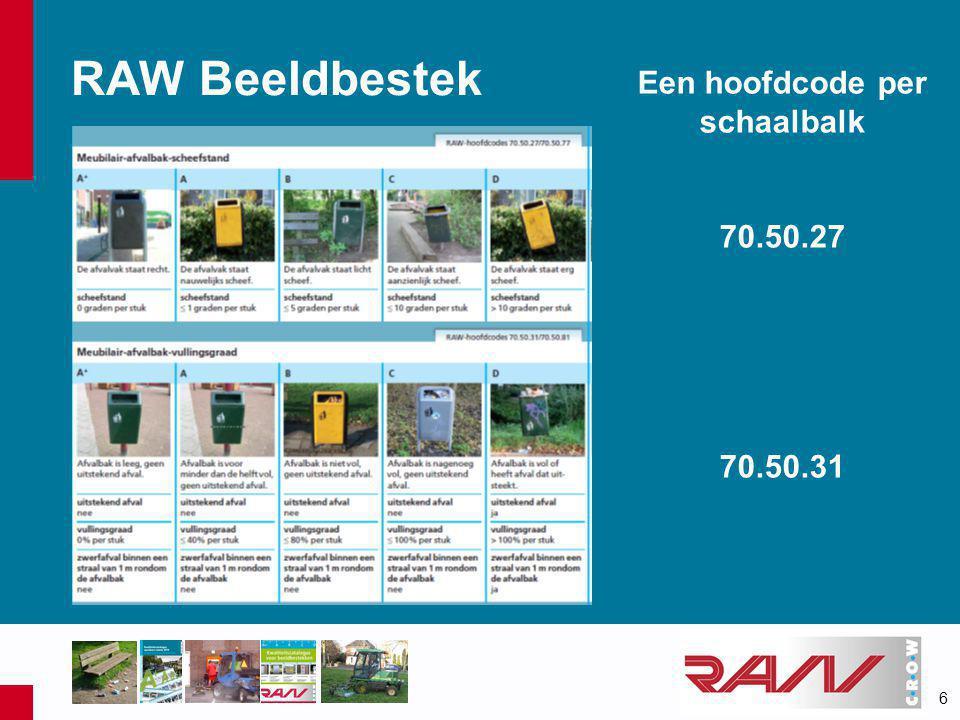 6 RAW Beeldbestek Een hoofdcode per schaalbalk 70.50.27 70.50.31