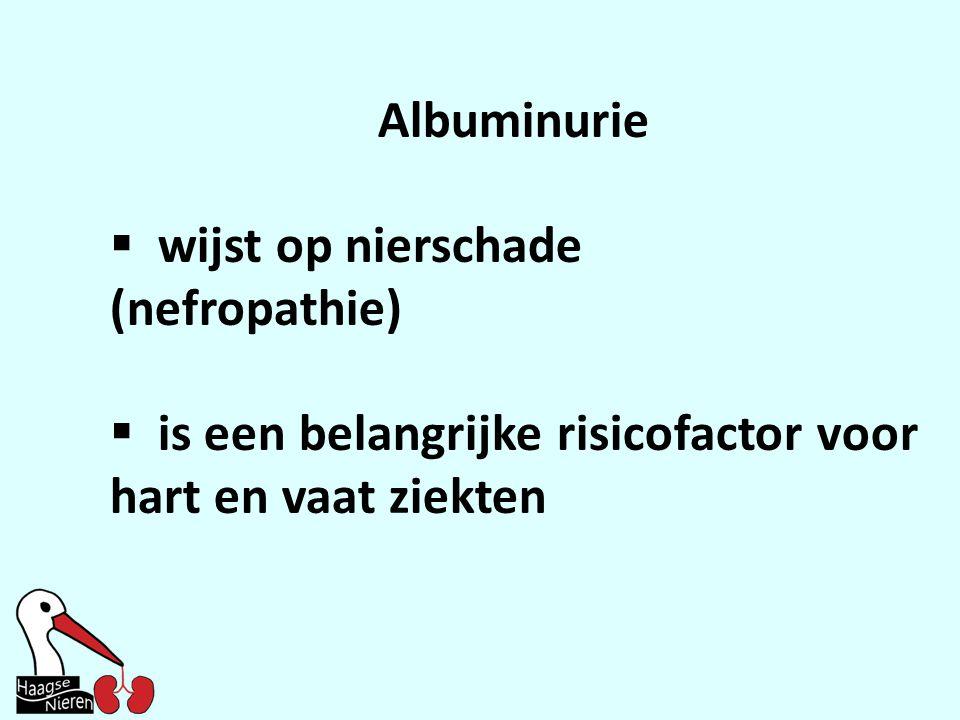 Albuminurie  wijst op nierschade (nefropathie)  is een belangrijke risicofactor voor hart en vaat ziekten