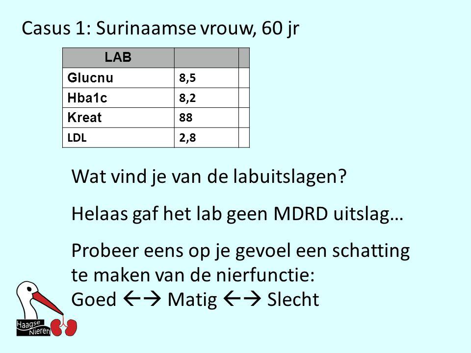 Casus 1: Surinaamse vrouw, 60 jr LAB Glucnu 8,5 Hba1c 8,2 Kreat 88 LDL2,8 Wat vind je van de labuitslagen? Helaas gaf het lab geen MDRD uitslag… Probe