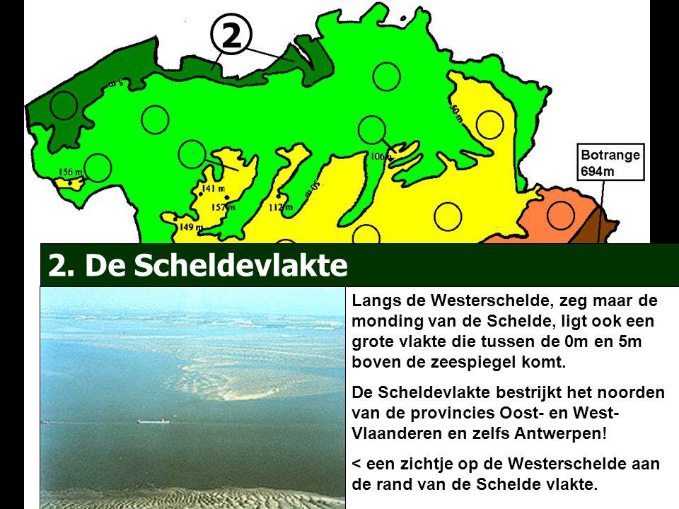 2 2. De Scheldevlakte Langs de Westerschelde, zeg maar de monding van de Schelde, ligt ook een grote vlakte die tussen de 0m en 5m boven de zeespiegel