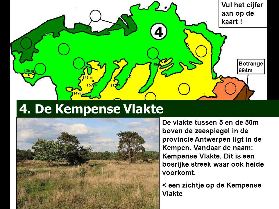 4 4. De Kempense Vlakte De vlakte tussen 5 en de 50m boven de zeespiegel in de provincie Antwerpen ligt in de Kempen. Vandaar de naam: Kempense Vlakte