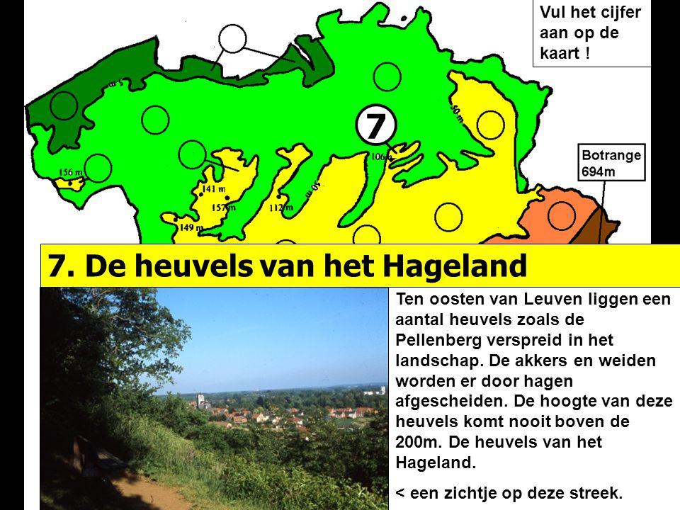 7 Ten oosten van Leuven liggen een aantal heuvels zoals de Pellenberg verspreid in het landschap. De akkers en weiden worden er door hagen afgescheide