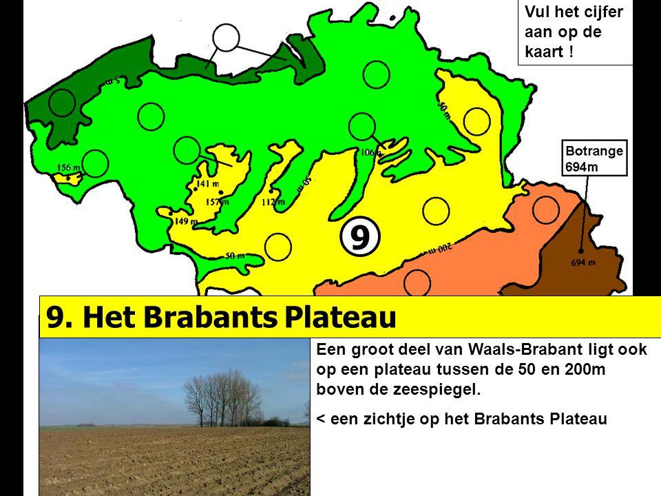9 Een groot deel van Waals-Brabant ligt ook op een plateau tussen de 50 en 200m boven de zeespiegel. < een zichtje op het Brabants Plateau 9. Het Brab