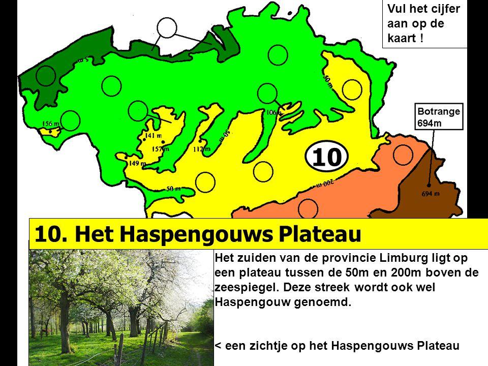 10 Het zuiden van de provincie Limburg ligt op een plateau tussen de 50m en 200m boven de zeespiegel. Deze streek wordt ook wel Haspengouw genoemd. <