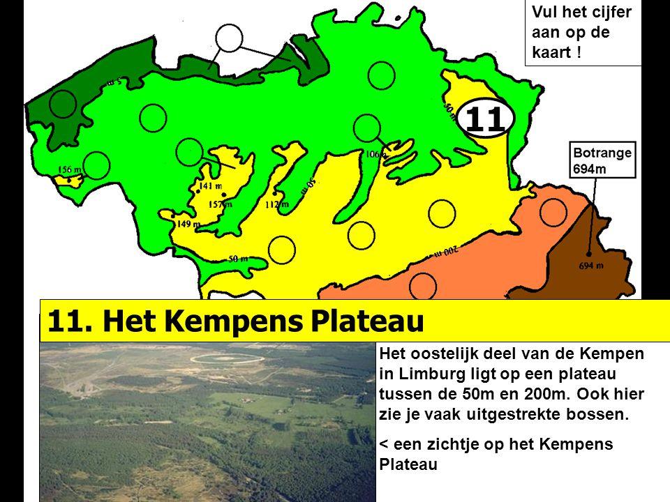 11 Het oostelijk deel van de Kempen in Limburg ligt op een plateau tussen de 50m en 200m. Ook hier zie je vaak uitgestrekte bossen. < een zichtje op h