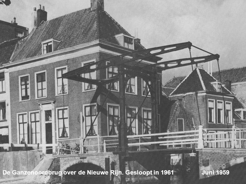 De Oude Rijn met het Huiszittenhuis uit 1755 Juni 1959