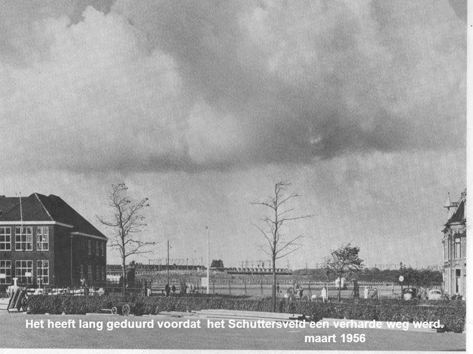 Hoge Woerd 1961 Vanaf de Lage Morsweg zie je tussen het koren door het silhouet van Leiden Augustus 1953 Pps: Bucssszzz