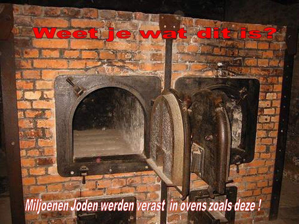 SPREIDING VAN DE CONCENTRATIEKAMPEN IN NAZI-DUITSLAND EN POLEN Uitroeiingskampen Gemengde kampen (concentratie & uitroeiing) Concentratiekampen Euthan