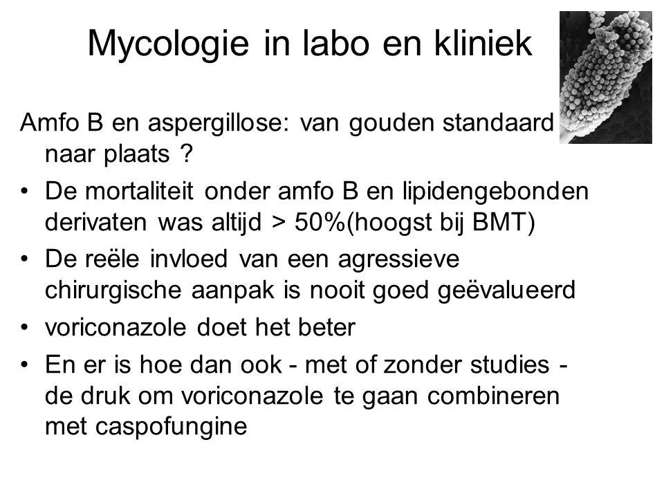 Mycologie in labo en kliniek Amfo B en aspergillose: van gouden standaard naar plaats ? •De mortaliteit onder amfo B en lipidengebonden derivaten was