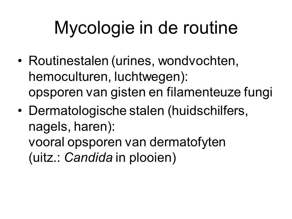 Mycologie in de routine •Routinestalen (urines, wondvochten, hemoculturen, luchtwegen): opsporen van gisten en filamenteuze fungi •Dermatologische sta