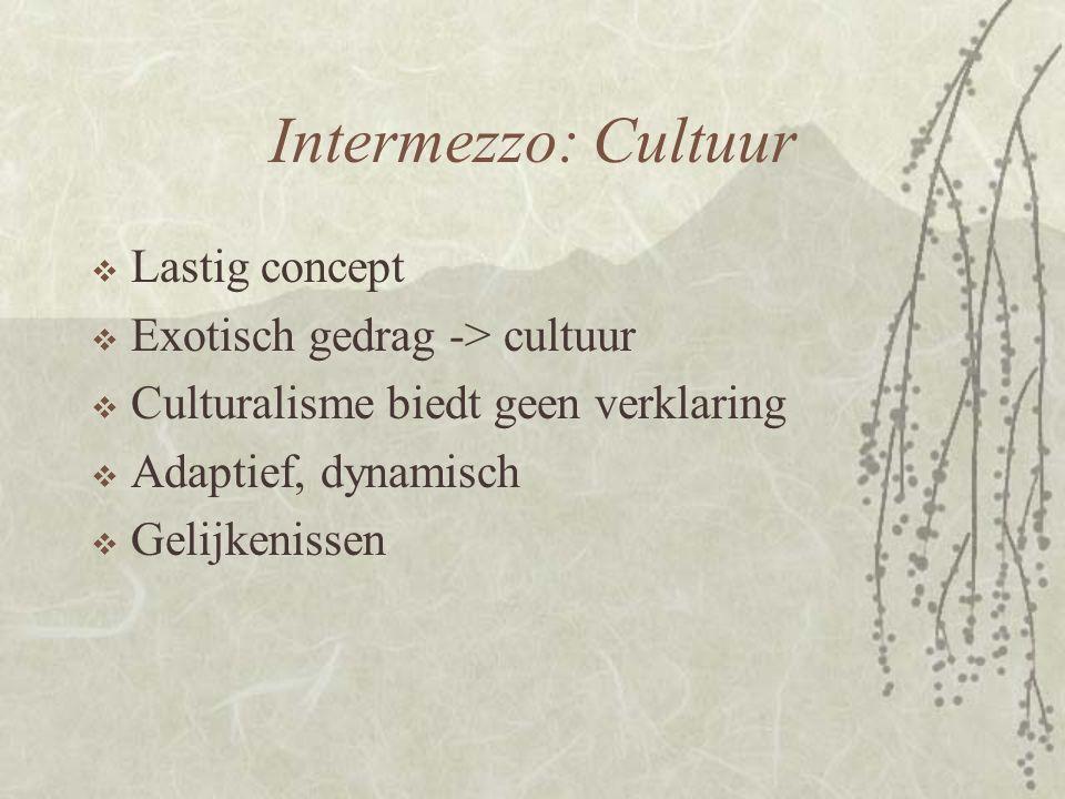 Intermezzo: Cultuur  Lastig concept  Exotisch gedrag -> cultuur  Culturalisme biedt geen verklaring  Adaptief, dynamisch  Gelijkenissen