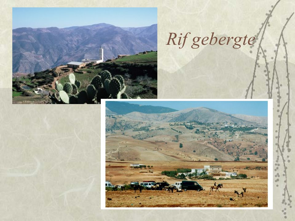Rif, arm  Schrale grond, weinig opbrengst  Landbouw, maar ook handel en smokkel  Relatief dicht bevolkt  Seizoensmigratie –Landbouw in Algerije –Spaanse leger