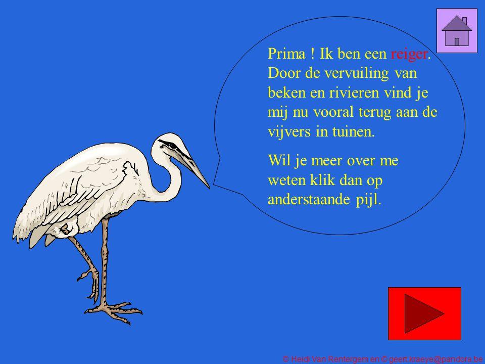 © Heidi Van Rentergem en © geert.kraeye@pandora.be FOUT! Probeer een andere foto !