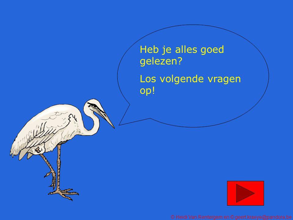 © Heidi Van Rentergem en © geert.kraeye@pandora.be Heb je alles goed gelezen.