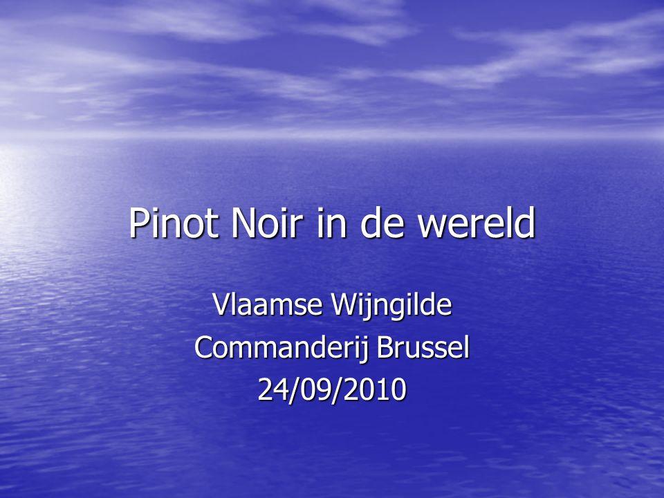 Pinot Noir in de wereld Vlaamse Wijngilde Commanderij Brussel 24/09/2010
