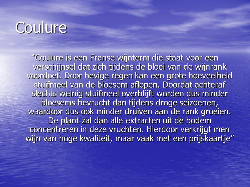 """Coulure """"Coulure is een Franse wijnterm die staat voor een verschijnsel dat zich tijdens de bloei van de wijnrank voordoet. Door hevige regen kan een"""