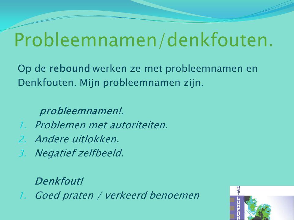 Probleemnamen/denkfouten.Op de rebound werken ze met probleemnamen en Denkfouten.