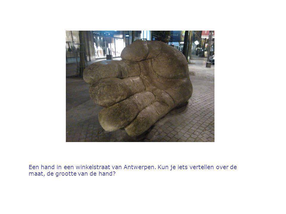 Een hand in een winkelstraat van Antwerpen. Kun je iets vertellen over de maat, de grootte van de hand?