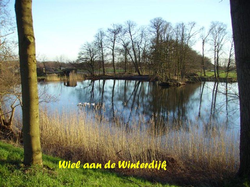 Schuurke in Boxtel Kasteel Zuidewijn