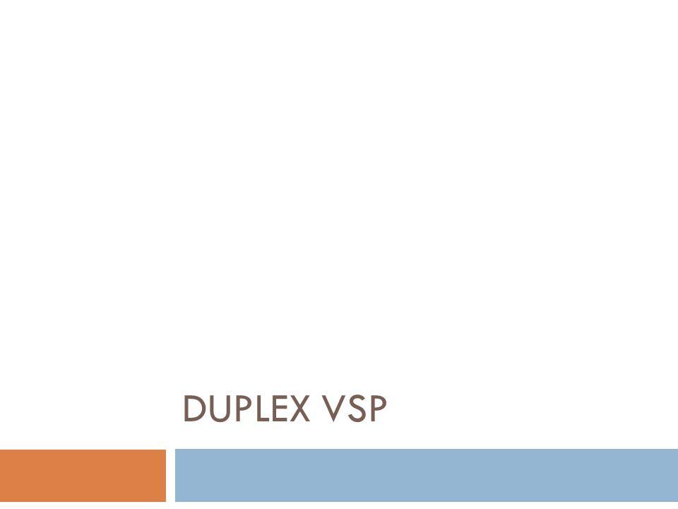 DUPLEX VSP