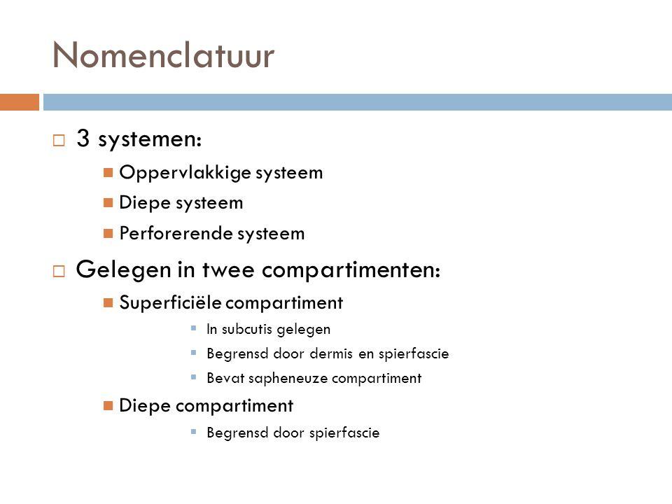 Nomenclatuur  3 systemen:  Oppervlakkige systeem  Diepe systeem  Perforerende systeem  Gelegen in twee compartimenten:  Superficiële compartimen