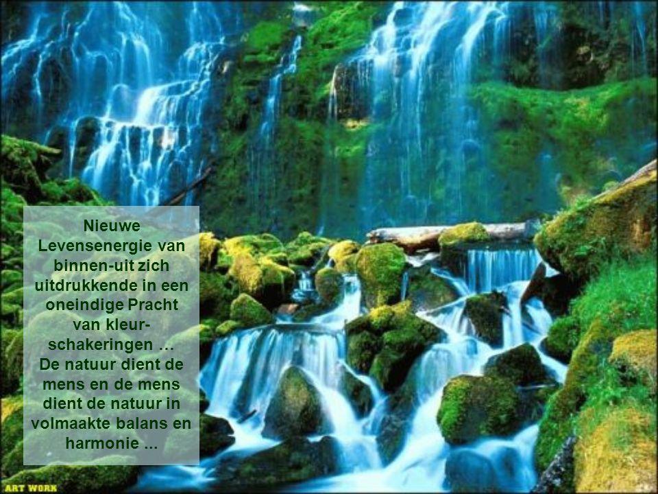 Nieuwe Levensenergie van binnen-uit zich uitdrukkende in een oneindige Pracht van kleur- schakeringen … De natuur dient de mens en de mens dient de natuur in volmaakte balans en harmonie...