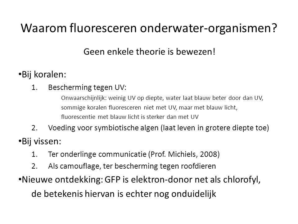 Waarom fluoresceren onderwater-organismen.Geen enkele theorie is bewezen.