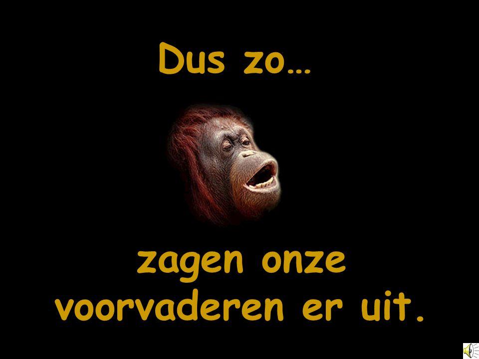 Geleidelijk aan ontstonden uit apen mensen...