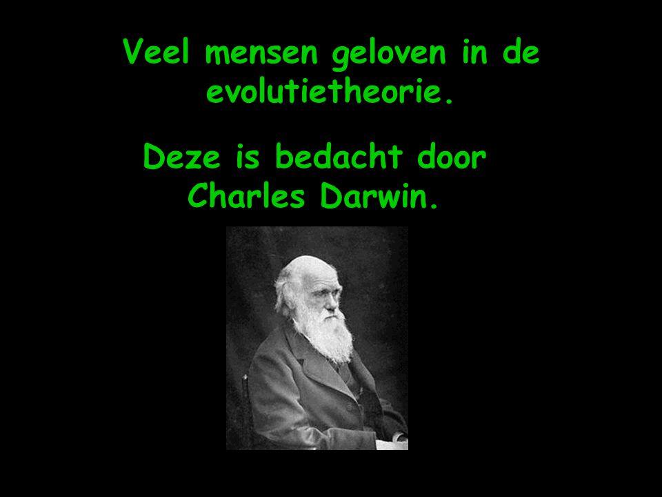 Veel mensen geloven in de evolutietheorie. Deze is bedacht door Charles Darwin.