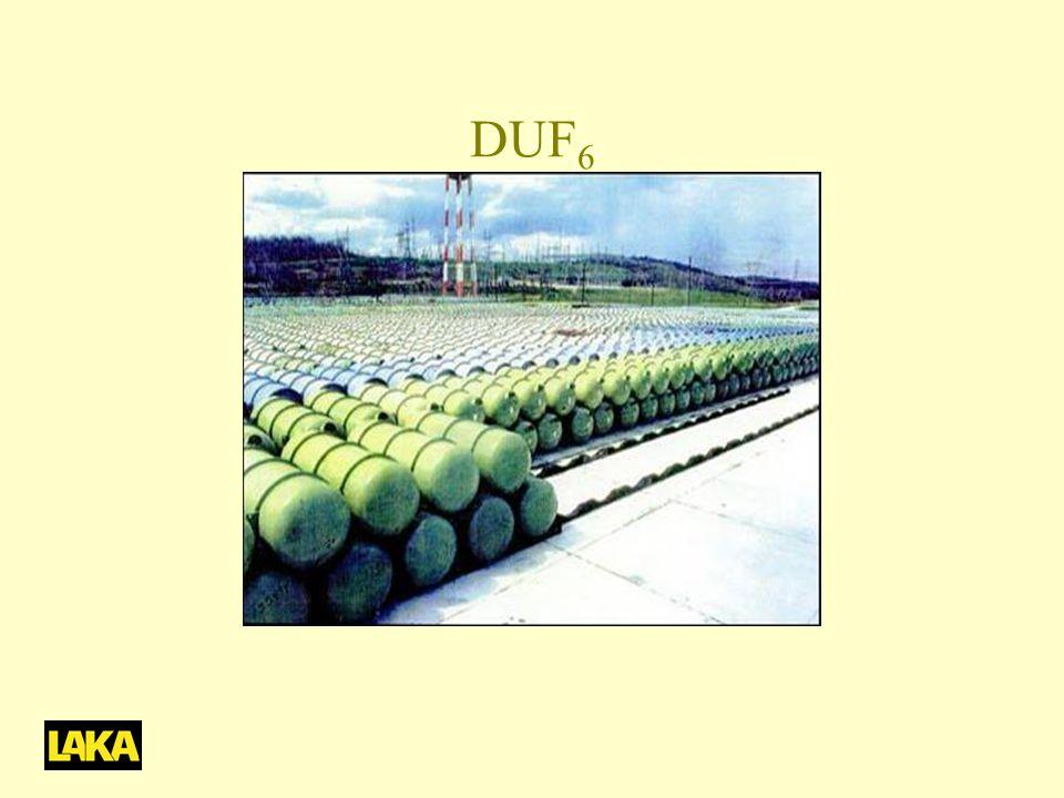 DUF 6
