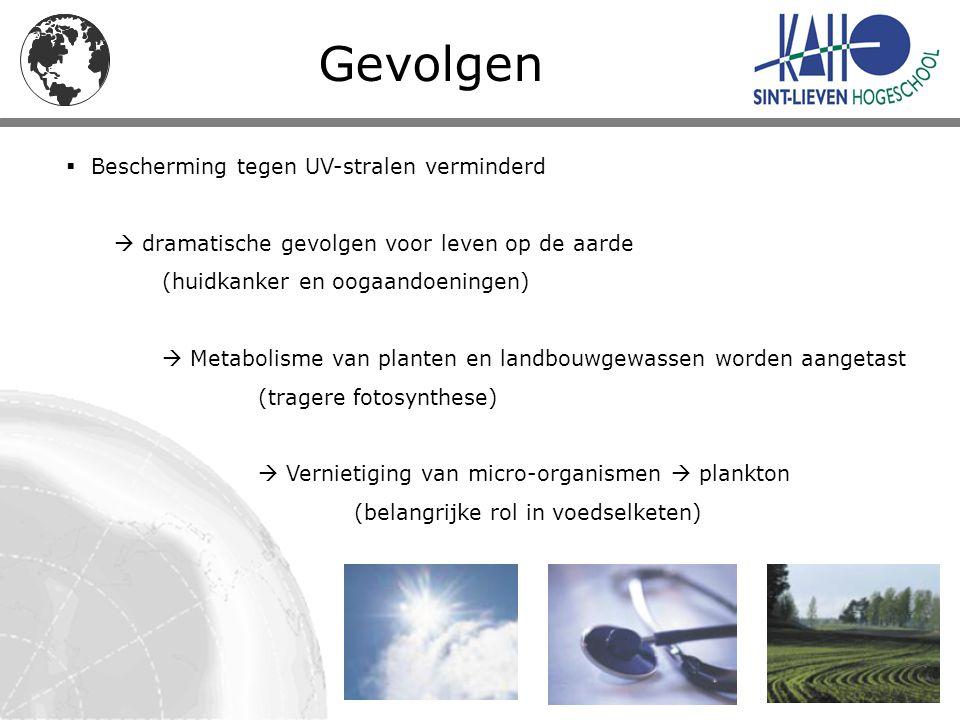 Gevolgen  Bescherming tegen UV-stralen verminderd  dramatische gevolgen voor leven op de aarde (huidkanker en oogaandoeningen)  Metabolisme van pla