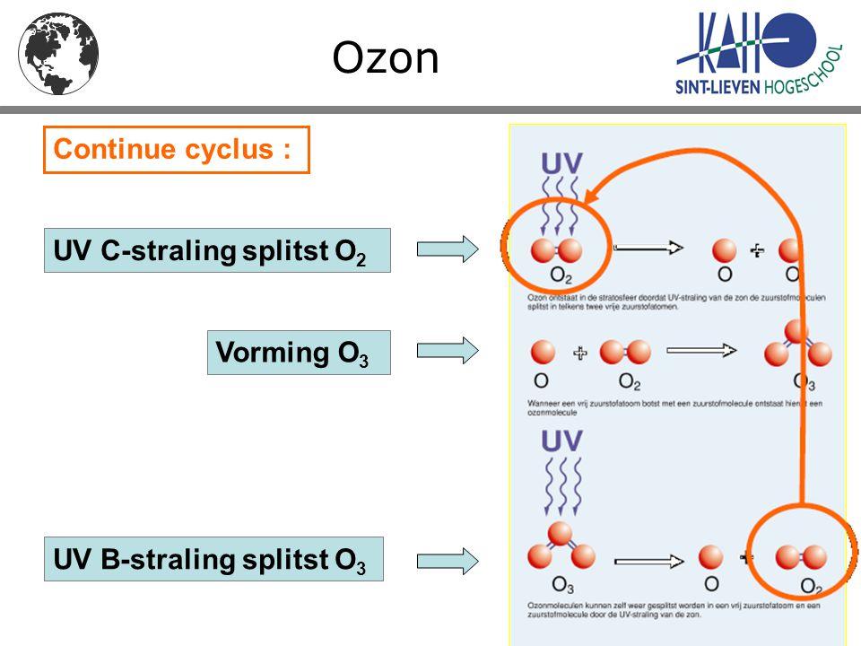 Ozon UV C-straling splitst O 2 UV B-straling splitst O 3 Vorming O 3 Continue cyclus :