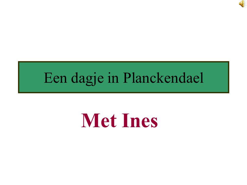 Een dagje in Planckendael Met Ines