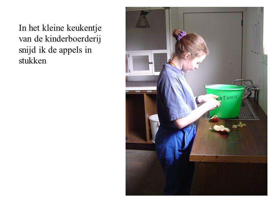 In het kleine keukentje van de kinderboerderij snijd ik de appels in stukken