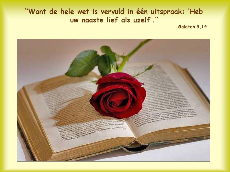 Want de hele wet is vervuld in één uitspraak: 'Heb uw naaste lief als uzelf'. Galaten 5,14